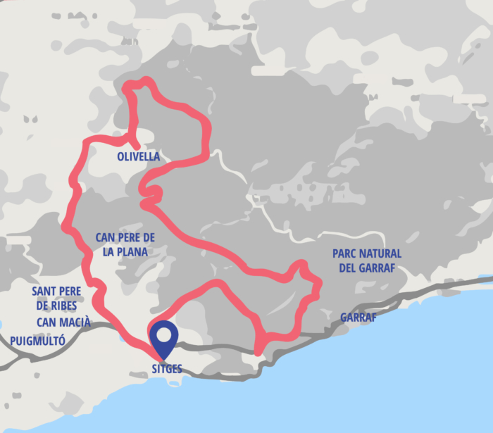 E-bike Tour Vineyards